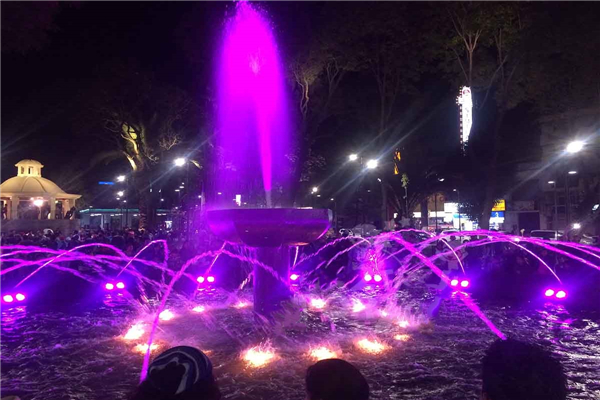 Pond Water Fountain With 2D Digital Nozzles And LED Lights, Mexico